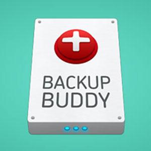 افزونه پشتیبان گیری حرفه ای سایت BackupBuddy